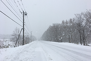 雪の八雲町